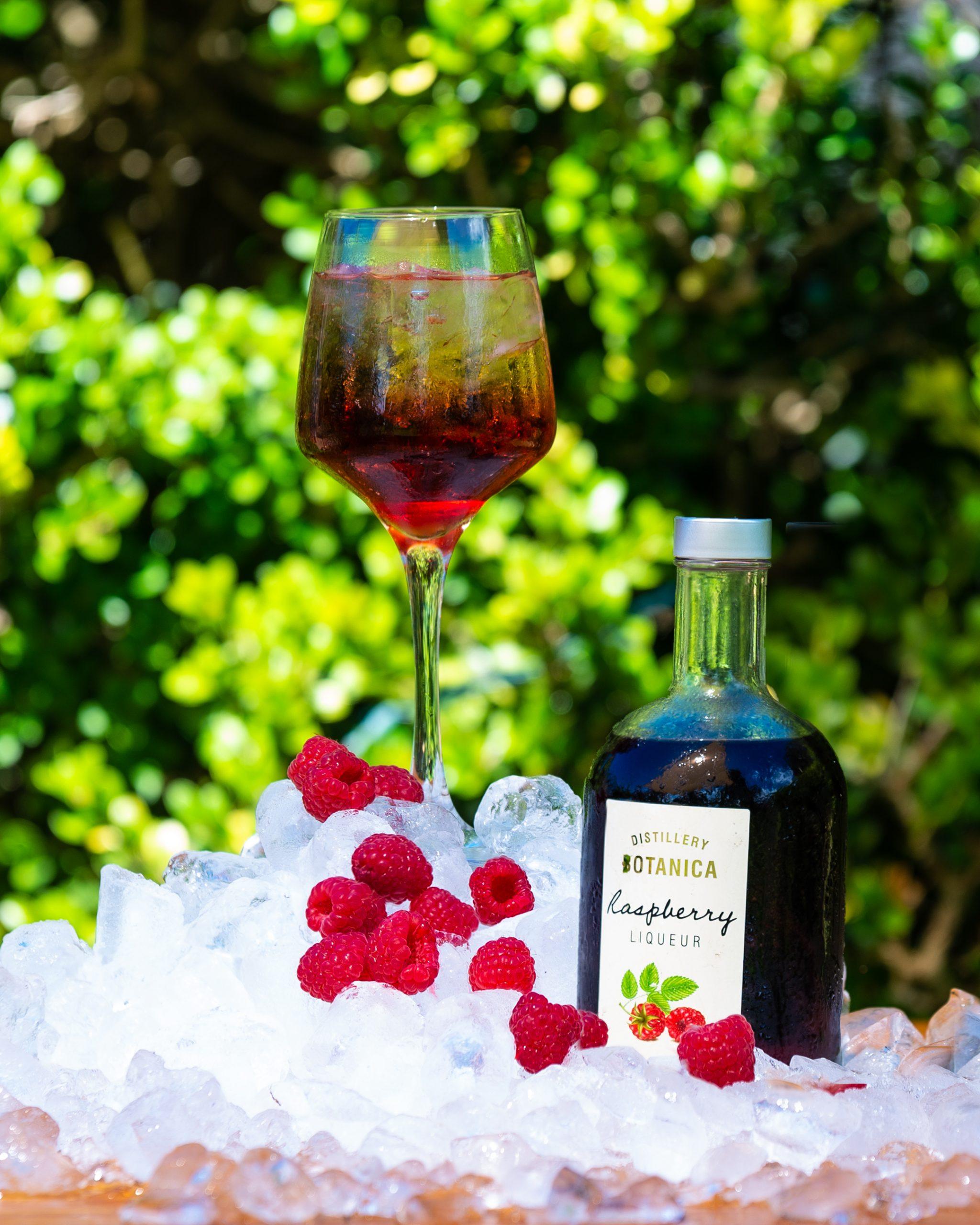 raspberry gin rickey